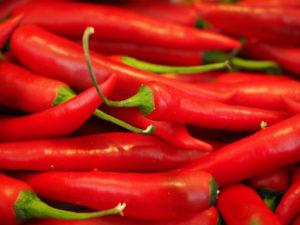chili(SMALL)